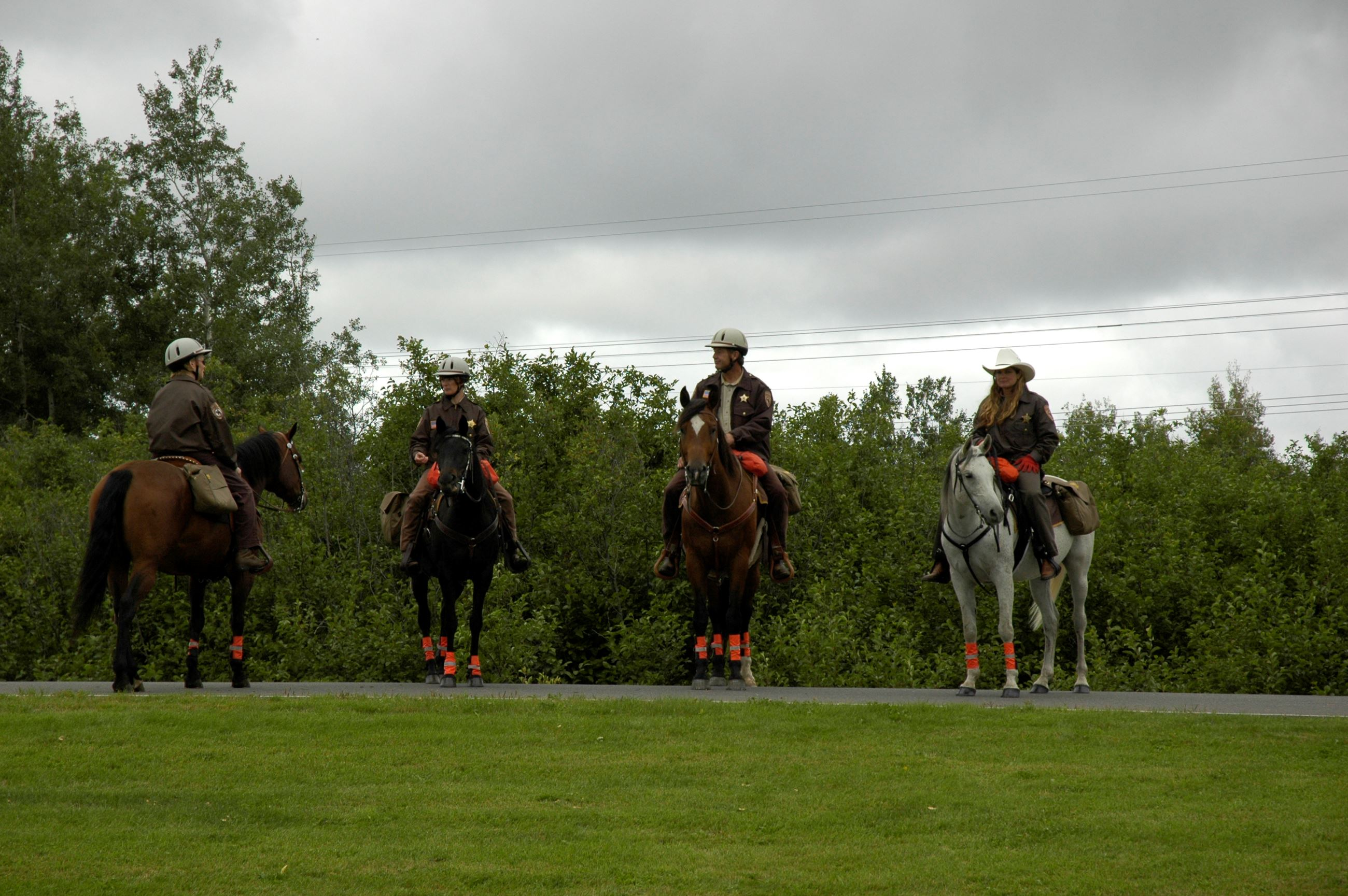 Four mounted officers giving demonstration